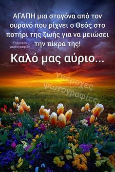 Good Night, Good Morning, L Love You, Greek Quotes, Good Vibes, Wisdom Quotes, Cool Photos, Feelings, Photography