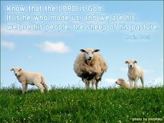 Psalm 100:3—Know that the LORD is God. It is he who made us, and we are his; we are his people, the sheep of his pasture.