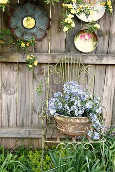 A Cottage Garden - phlox in a container