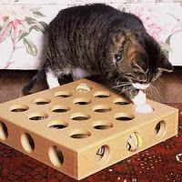 My Daily Obsessions: DIY cat toy box knock-off
