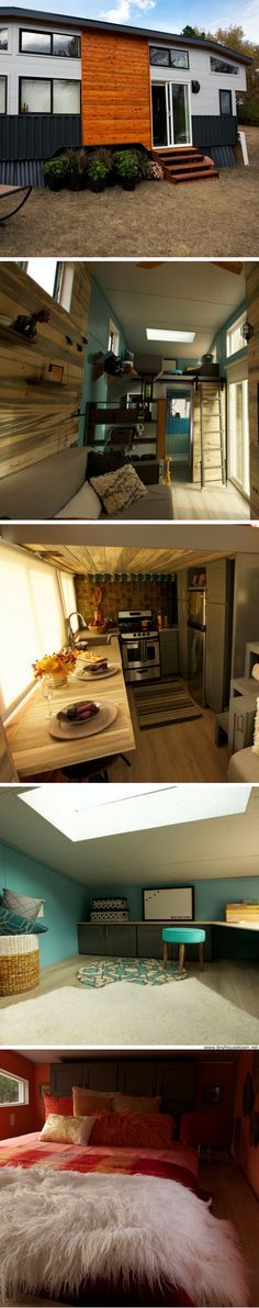 A 300 sq ft tiny house with an entertainment room, space for dogs, and a home office!