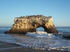 Natural Bridges State Beach - Wikipedia, the free encyclopedia