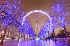 Ride the London Eye. Got to spend 13 hours in England and I spent an hour of it riding the London Eye Bucket List For Teens, Summer Bucket Lists, London Eye, London Night, Weihnachten In London, Christmas Lights, Merry Christmas, Christmas Time, Purple Christmas