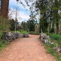 #Weg #Path #Pavillon #Baum #Tree #Park #BallyPark #Schweiz #Switzerland