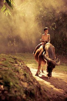 I miss Vietnam