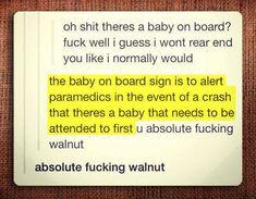 Absolute Walnut…