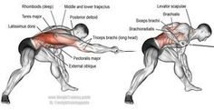 Bent over one arm cable pull. A unilateral (one-sided) compound exercise. Target muscle: Latissimus Dorsi. Synergistic muscles: Brachialis, Brachioradialis, Teres Major, Posterior Deltoid, Rhomboids, Levator Scapulae, Middle and Lower Trapezius, Lower Pectoralis Major, Pectoralis Minor, Obliques, Psoas Major, Quadratus Lumborum, Iliocastalis Lumborum, and Iliocastalis Thoracis. Dynamic stabilizers: Biceps Brachii and Triceps Brachii (long head only).