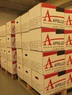 Apollo verhuizingen: Opslag van verhuisgoederen
