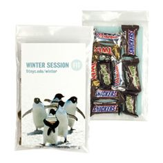 Candy bag filled with 10 pcs of mixed mini candy bars.  Candy bars include Milky Way, 3Musketeers, Snickers, and Twix.  Great promotional snack pack for conventions, trade shows, and giveaways. $6.50