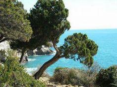 San Felice Circeo. Grotta delle Capre