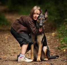 www.meypet.com - Disfruta de la red social para tus mascotas y encuentra los mejores profesionales para ellas.