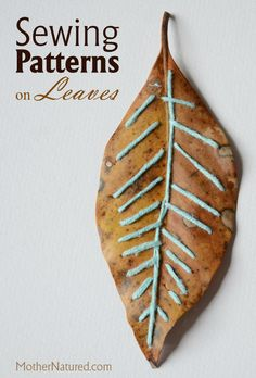 Sewing patterns on leaves is a fun and creative kid's activities. Your kids will practice fine motor skills and enjoy the beauty of nature! Art Et Nature, Nature Crafts, Projects For Kids, Crafts For Kids, Arts And Crafts, Leaf Crafts, Fall Crafts, Autumn Activities, Art Activities