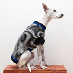 Diagonal Stripe PulloverBlack & White — WARE of the DOG