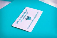 Terra Dawn Photography - A business card for a very active photographer, especially the website. The eye-catching blue stands out well against the clean white background. The cute logo is distinctive and memorable.
