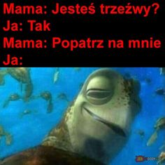 Polish Memes, Very Funny Memes, Best Memes, Haha, How Are You Feeling, Humor, Winter Makeup, Warsaw, Poland