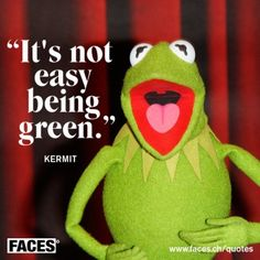 """""""It's not easy being green"""" ~ Kermit the Frog #quote"""