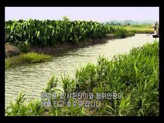 혀끝으로 만나는 중국 7회 - YouTube