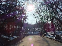 Secret Garden in Korea