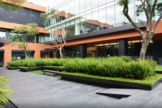 xylemious:  Coyoacán Corporate Campus Landscape by DLC Architects Source
