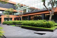 Coyoacán Campus Corporativo por DLC Arquitectos