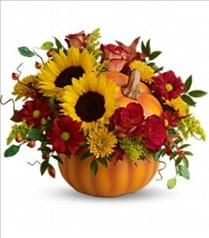 This would be a nice centerpiece for Thanksgiving.