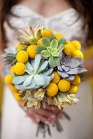 Yellow Billy Ball and Green Succulent Wedding Bouquet. I'd like to see more green and less yellow, but otherwise, love the shape and size of this bouquet - not too neat, not too messy. Maybe add a couple hints of orange? Billy Balls, Cactus Wedding, Yellow Wedding Flowers, Green Wedding, Yellow Flowers, Wedding Colors, Wedding Ideas, Wedding Decor, Bridal Flowers