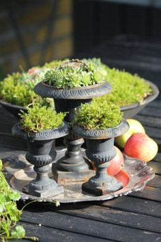 Succulents or simple moss in pretty urn display Small Urns, Urn Planters, Garden Urns, Deco Floral, Plantation, Cacti And Succulents, Garden Styles, Dream Garden, Garden Inspiration