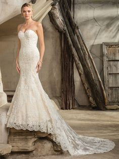 Wedding Dress 2292 Sedona by Casablanca Bridal - Search our photo gallery for pictures of wedding dresses by Casablanca Bridal. Find the perfect dress with recent Casablanca Bridal photos. Lace Wedding Dress, Bridal Party Dresses, Wedding Dress Styles, Wedding Gowns, Lace Dress, Blue Wedding, Lace Skirt, Vestidos Marchesa, Casablanca Bridal Gowns