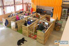 Kurgo-Dog-Supplies-Container-Office-10