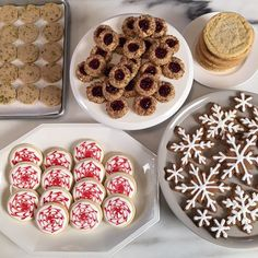 WEBSTA @ marthastewart48 - I am LIVE today on Facebook at 1pm ET talking holiday cookies and answering all your questions! Tune in http://facebook.com/marthastewart