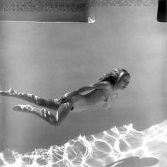 Gloria Knight / photo by Edmund Leja, 1964.
