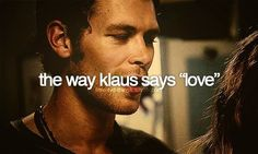 klaus, love, and the vampire diaries image