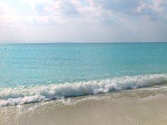 ウミガメが産卵に来るほど、綺麗なビーチ