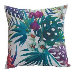 liście egzotyczne storczyk paradise