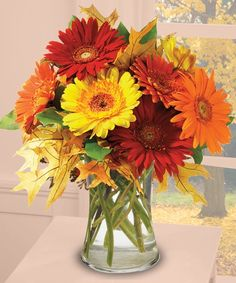 Autumn Daisies  The warmth of the season radiates from this exuberant floral arrangement featuring glorious Gerber Daisies in every color under the autumn sun!