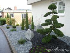 Ogród mały, ale pojemny;) - strona 91 - Forum ogrodnicze - Ogrodowisko