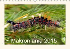 Makromania 2015 - CALVENDO Kalender - #makro #fotografie #fotos #kalender