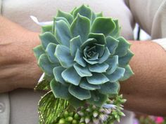 Loving this dramatic succulent corsage