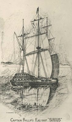 There were eleven ships in the First Fleet. They were all small ships that included two naval ships, six convict ships and three storeships for supplies. This is a picture of the flagship Sirius, which carried Captain Aurthur Philip first govermor of NSW. It was wrecked off Norfolk Island in 1790 and its wreck was given National Heritage status in 2011.
