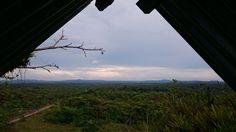 Panorama desde la casa del árbol. Puyo, Pastaza. By A. Vicuña
