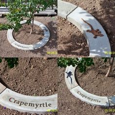 to Make Concrete Tree Rings How To Make Concrete Tree Rings. Love the idea of leaving behind text on concrete.How To Make Concrete Tree Rings. Love the idea of leaving behind text on concrete. Garden Crafts, Garden Projects, Garden Art, Memory Tree, Tree Rings, Lawn And Garden, Gravel Garden, Terrace Garden, Outdoor Projects