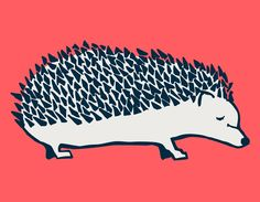 """""""Simple Hedgehog"""" Canvas Wall Art for Kids, Tweens, and Teens by Katy Yeaw for Oopsy Daisy. 18x14 $89 and 24x18 $119 (LAST DAY! 15% off New Art + FREE shipping over $48)"""