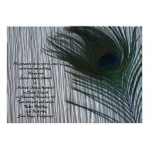 Peacock with White Wedding invitations.  These invites look stunning with the white background.  The green and blue peacock bird feather is so elegant.