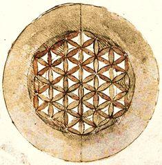 """Disegno di Leonardo del """"fiore della vita"""", figura geometrica """"sacra"""", cui nel tempo, sono state attribuiti vari significati simbolici"""