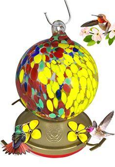 Grateful Gnome - Hummingbird Feeder - Hand Blown Glass - ... https://www.amazon.com/dp/B0194FD0BW/ref=cm_sw_r_pi_dp_x_fXTAyb5RCM062