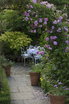 How to grow a rose garden is part of Cottage garden Seating Area - Discover how to design and create a romantic rose garden, billowing with fragrant blooms, with our expert guide Garden Shrubs, Garden Paths, Garden Planters, Border Garden, The Secret Garden, Cottage Garden Design, Cottage Garden Patio, Small Cottage Garden Ideas, Rose Garden Design