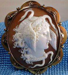 Medusa, shell, early victorian