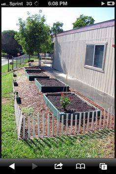 Elementary school gardening project. Kindergarteners were able to grow their own fruits & veggies during 2011.