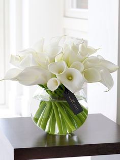 Calla Lilies... in time for Easter