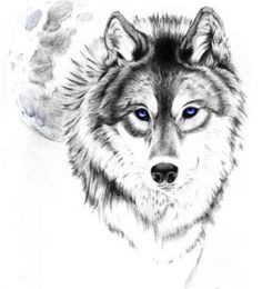 Wolf tattoo outline